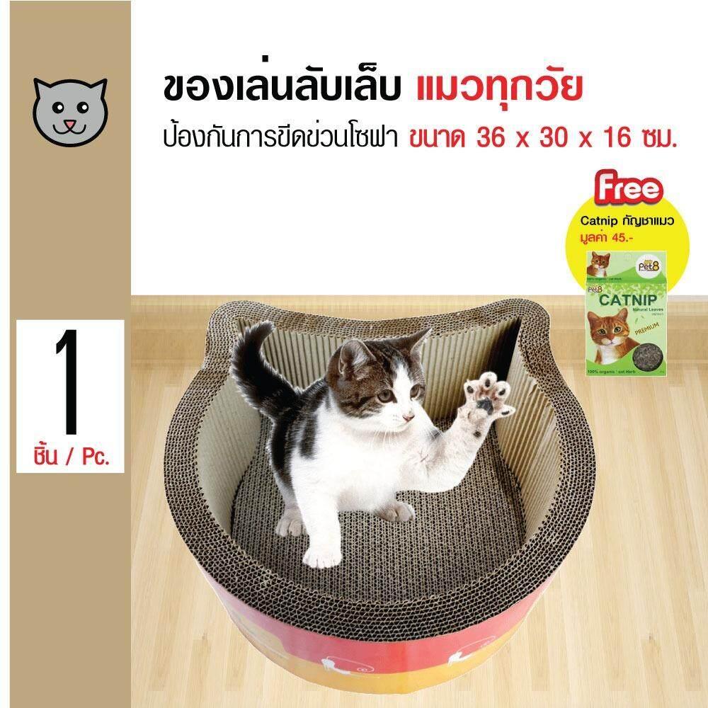 ราคา Pet8 ของเล่นแมว ที่ข่วนเล็บแมว รุ่นหน้าแมว สำหรับแมวทุกวัย ขนาด 36X30X16 ซม ฟรี Catnip กัญชาแมว Pet8 ใหม่