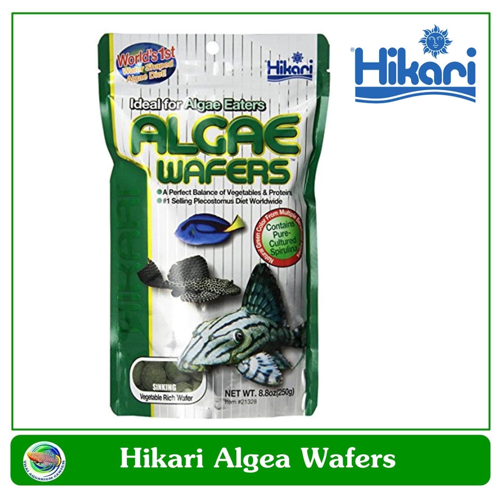 ราคา Hikari Algae Wafer อาหารปลาสวยงาม ปลากินพืช ตะไคร่ ขนาด 120 กรัม ใหม่