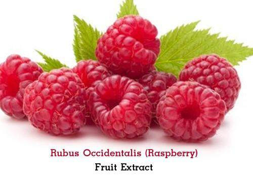 Rubus-Occidentalis-(Raspberry)-Fruit-Extract.jpg
