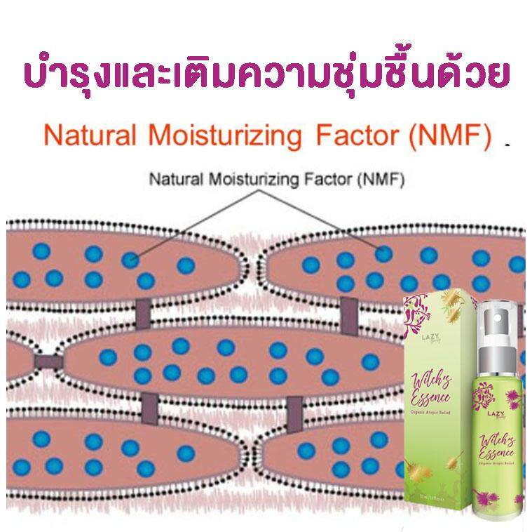 NMF2.jpg