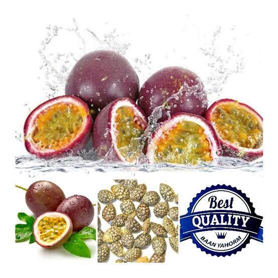 ทบทวน เมล็ดพืช Seeds เสาวรสหวาน สีม่วง Purple Passion Fruit เมล็ดพันธุ์ คุณภาพ 50 เมล็ด