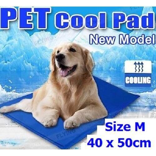 ราคา Pet Cool Mat ขนาด M 40X50Cm เบาะนอน ที่นอนเจลเย็น ช่วยคลายร้อน ให้สัตว์เลี้ยง Pet เป็นต้นฉบับ
