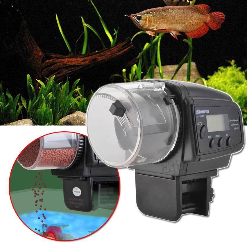0 Automatic fish feeder 1.jpg
