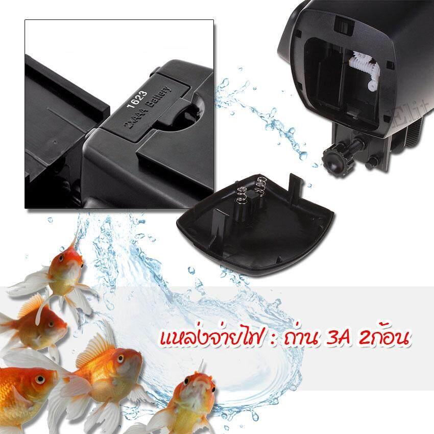 4 Automatic fish feeder 1.jpg