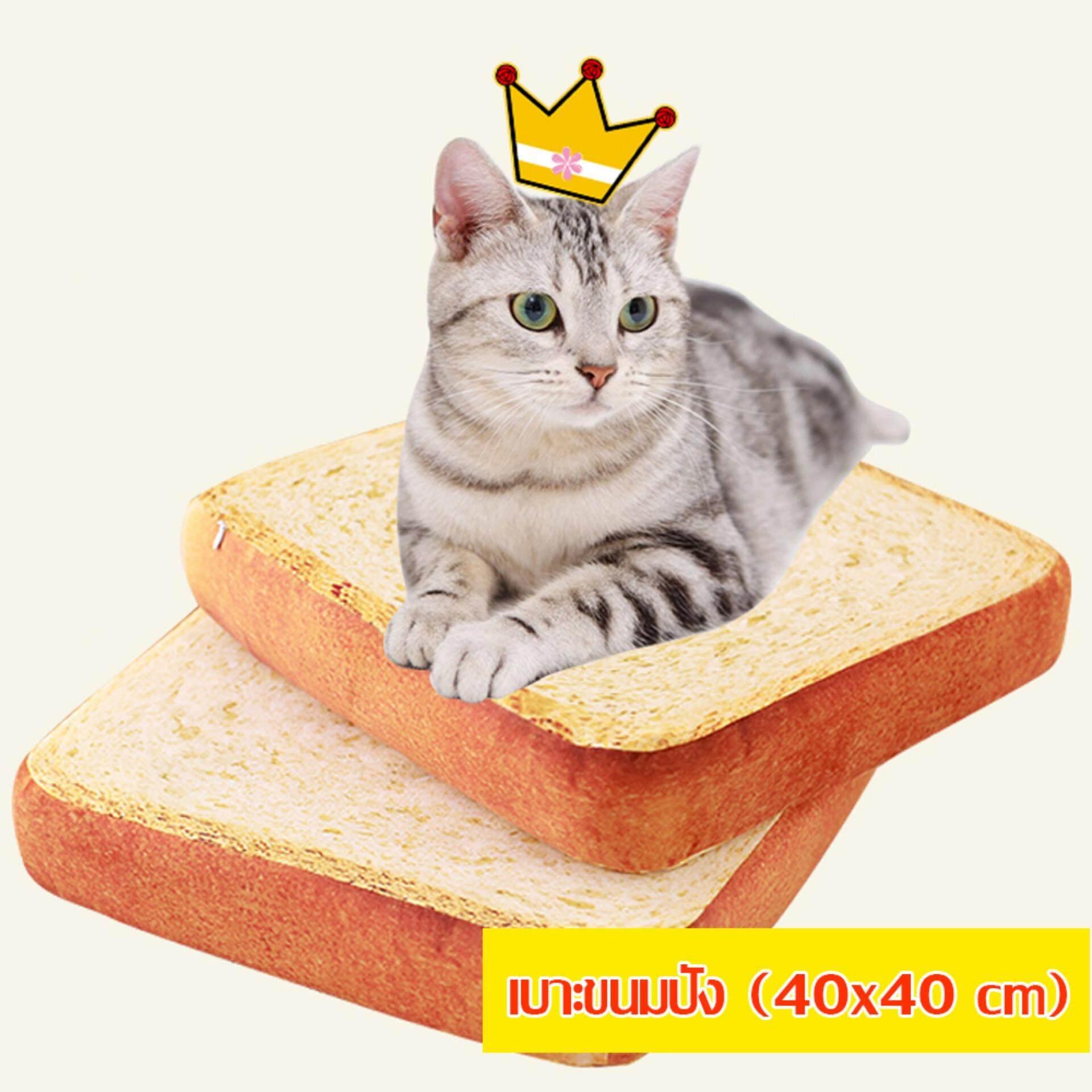 ซื้อ Petstory ที่นอนขนมปัง เบาะขนมปัง ที่นอนแมว เบาะแมว ขนาด 40Cm Petstory