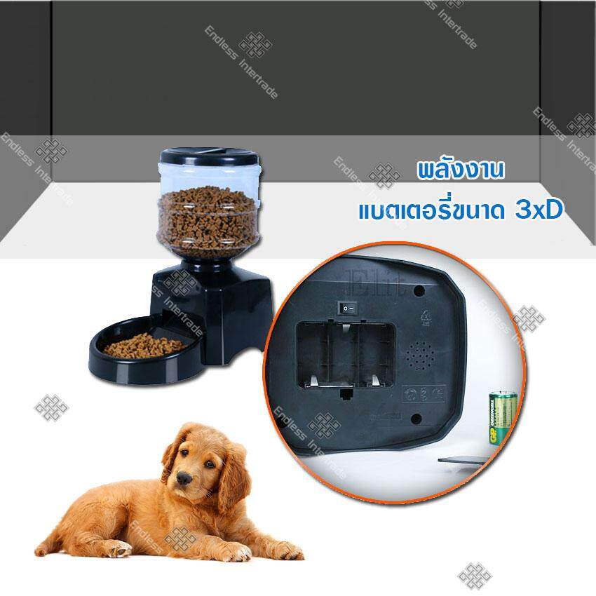1 digital Pet feeder 1.jpg
