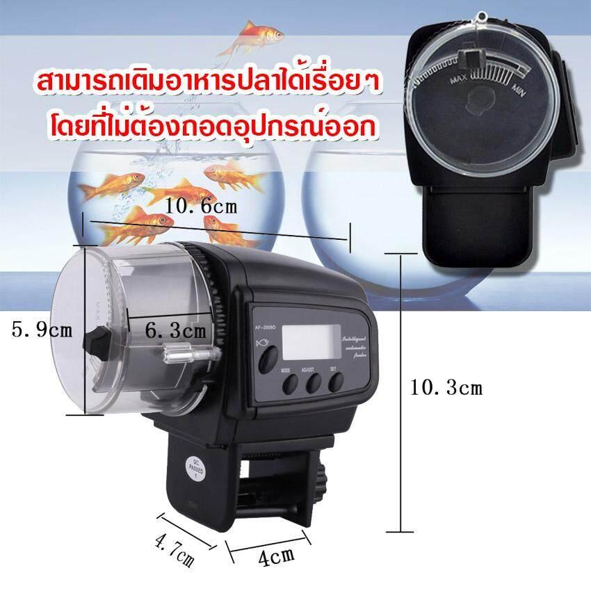 6 Automatic fish feeder 1.jpg