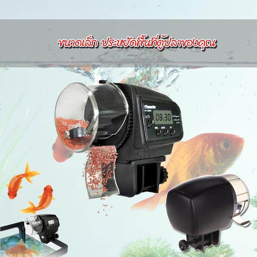 1 Automatic fish feeder 1.jpg