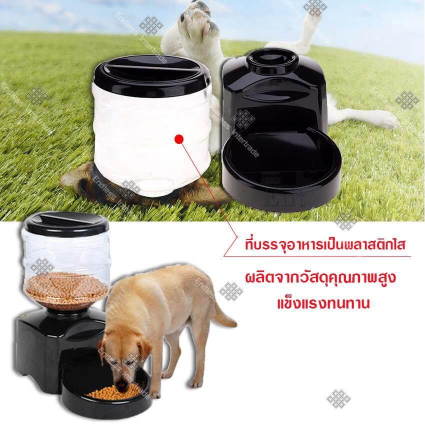 3 digital Pet feeder 1.jpg