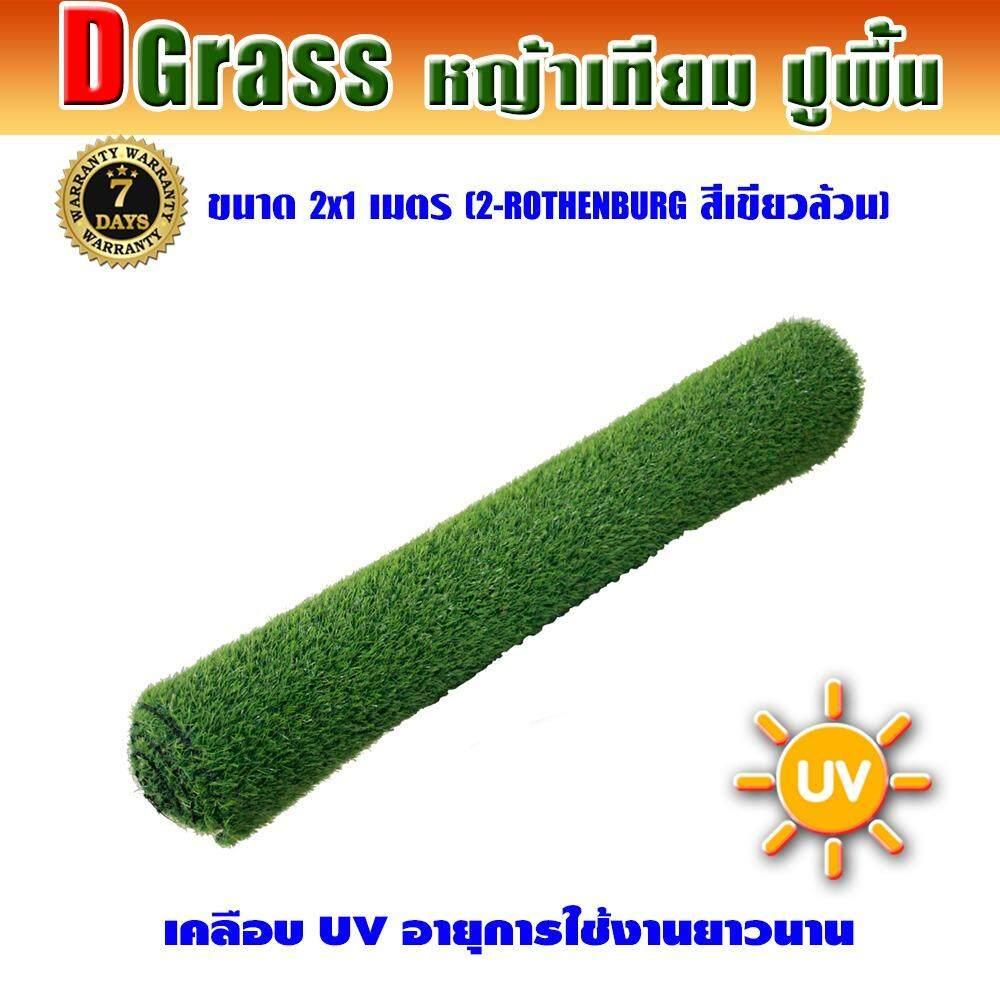 ราคา Dgrass หญ้าเทียม ปูพื้น ตกแต่งสวน ความสูง 2 ซม รุ่น Dg 2 Rothenburg 2R เขียวล้วน ขนาด 2X1 เมตร Dgrass ใหม่