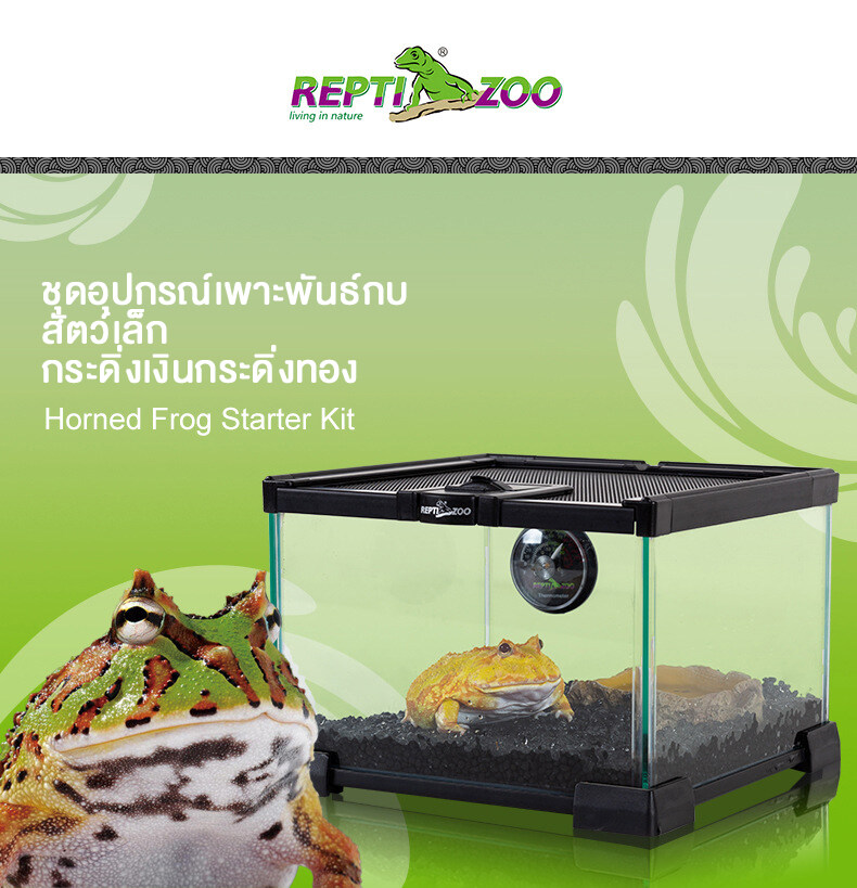 REPTI ZOO ชุดอุปกรณ์เพาะพันธ์กบ สัตว์เล็ก กระดิ่งเงินกระดิ่งทอง 21cm x 21cm x 15cm