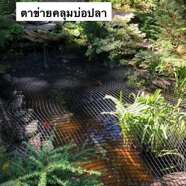 ตาข่ายคลุมบ่อปลา อ่างเลี้ยงปลา ในสวน ป้องกันนก ป้องกันใบไม้ล่วง ขนาด2x4เมตร Fish Pond Net