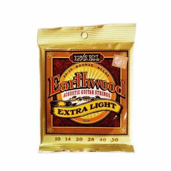 Harga Ernie Ball Earthwood Extra Light
