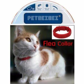 Harga Kill Flea & Tick Collar For Cat Pet Supplies Product AdjustableFor Small Dogs Flea Collars - intl