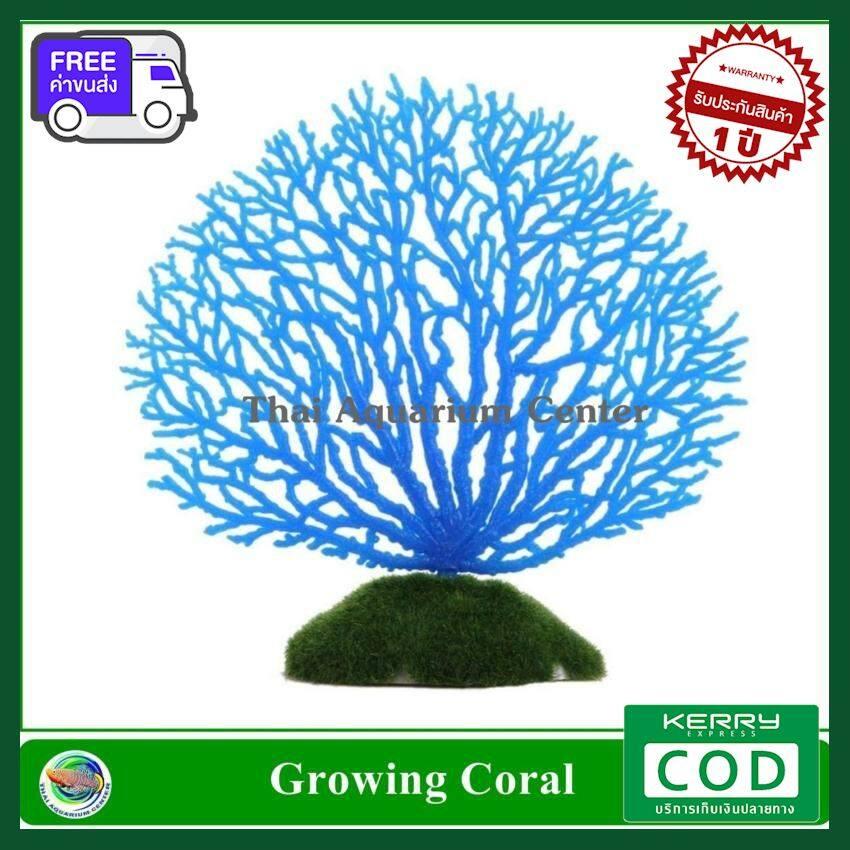 [ส่งฟรี ส่งไว] ปะการังเทียม สีฟ้า ใช้ตกแต่งตู้ปลา ของแท้ คุณภาพดี ส่งไว ส่งทุกวัน ฟรี!! ของแถม