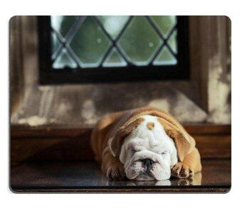 Harga Sold by ELong station Mouse Pad Gaming Mouse pad Natural Rubber mouse mat Cute english bulldog puppy in in a luxury room indoors laying by a window M0A05740 - intl