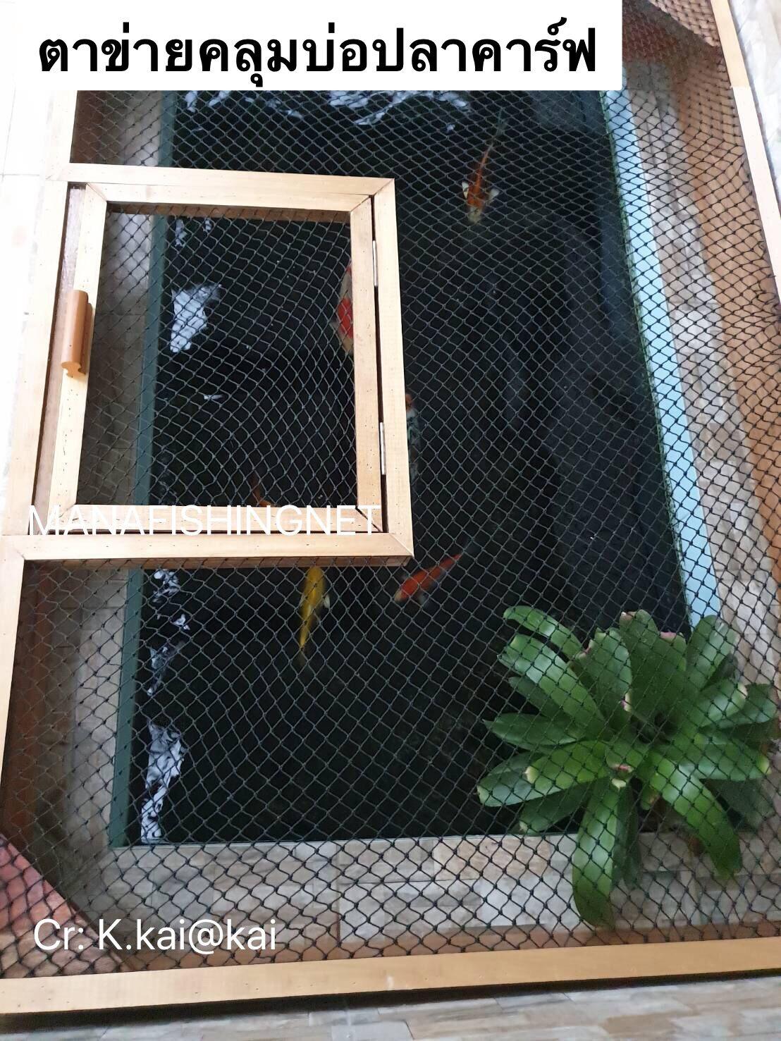 ตาข่ายคลุมบ่อปลาคราฟ KOI pond ขนาด 1.2x4 เมตร