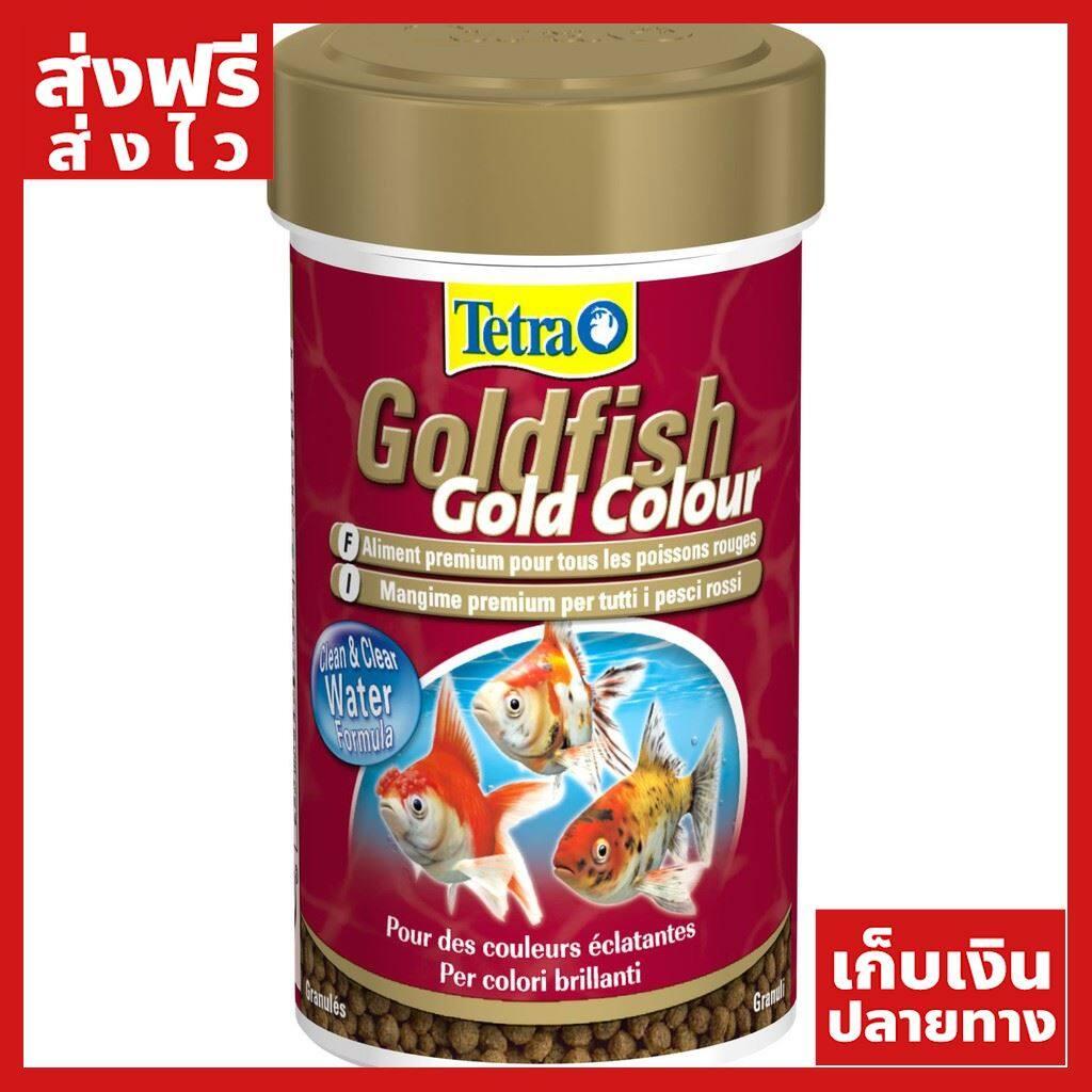 [ส่งฟรี] Tetra Goldfish Gold Colour อาหารสำหรับปลาทองทุกสายพันธุ์ สูตรเร่งสี เกรดพรีเมี่ยม ขนาด 75 g./250 ml. ( 1Units ) ของแท้ ส่งไว ได้ของไว ฟรี!! ของแถม มีดนามบัตรพกพา