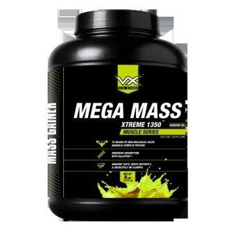 Harga Dymatize Nutrition Super Mass - VX Mega Mass 6 lbs Chocolate