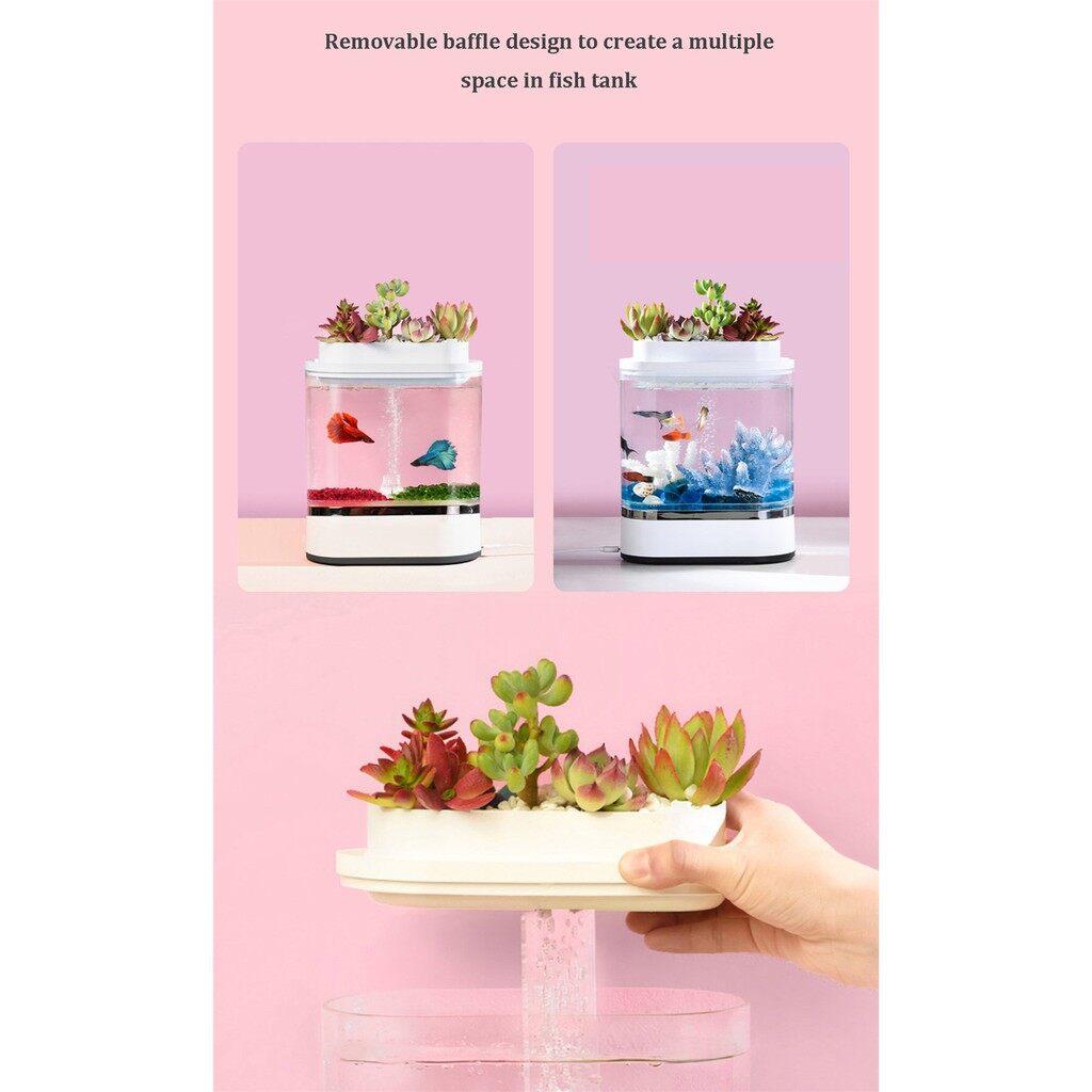 ⚡ส่งเร็ว 1-3 วัน⚡ Xiaomi Lazy Fish Tank, geometry Aquarium by Xiaomi - ตู้ปลาจำลองระบบนิเวศน์ในน้ำราคาถูก