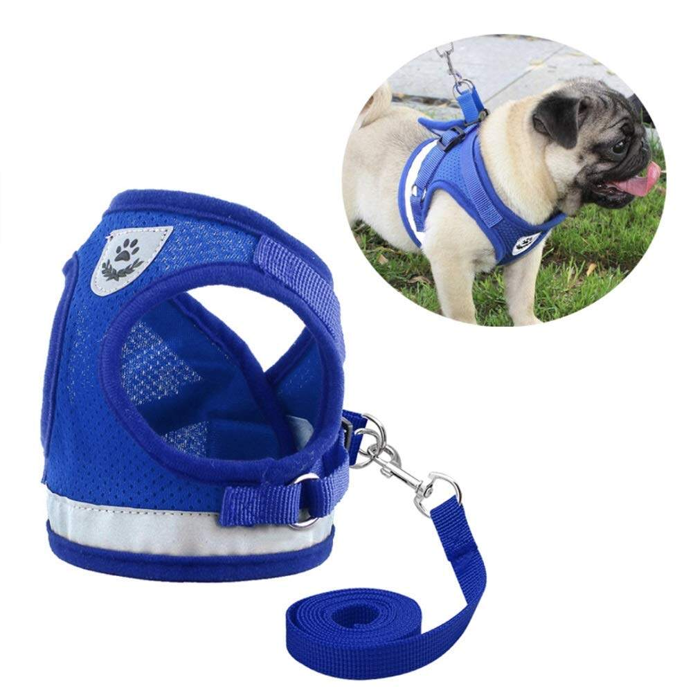 สายจูงสุนัข เรืองแสง (AB01) สายจูงสัตว์เลี้ยง สายจูงหมา สายรัดอกสุนัข สายจูง+สายรัดอก