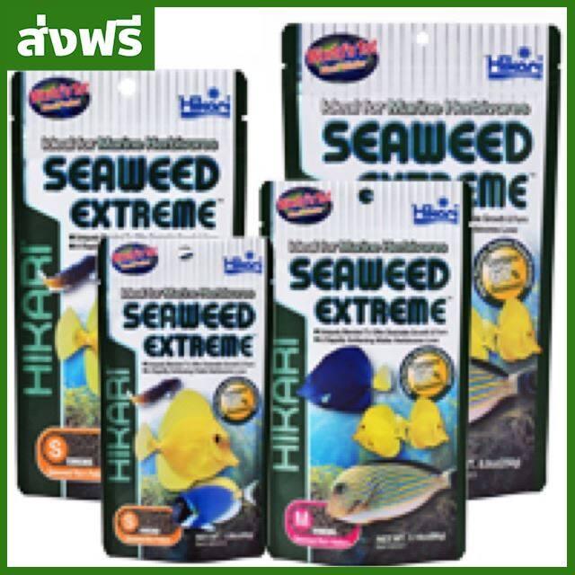 [ส่งฟรี] อาหารปลาทะเล HIKARI SEAWEED เม็ดS-M ของแท้ จัดส่งไว