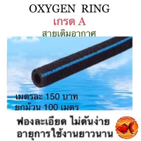 OXYGEN RING สายอ็อกริงค์ ขนาด 1 ม.