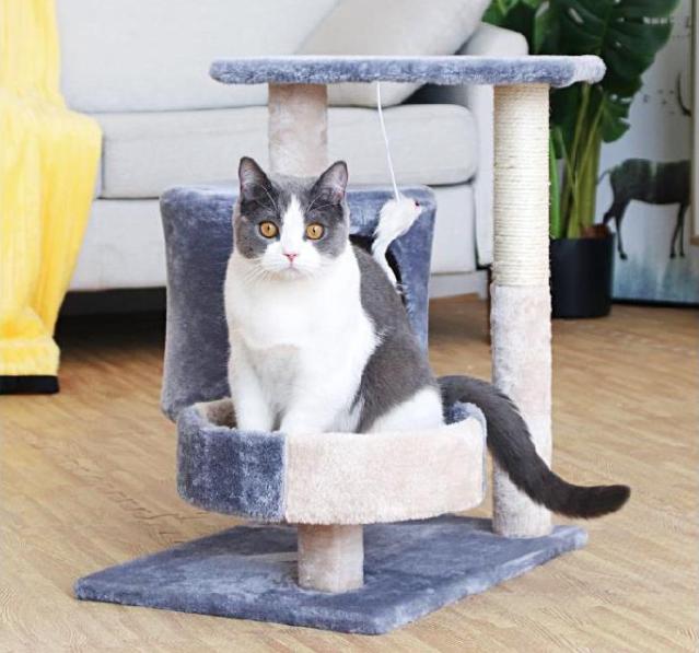 คอนโดแมว สีเทา 55 CM