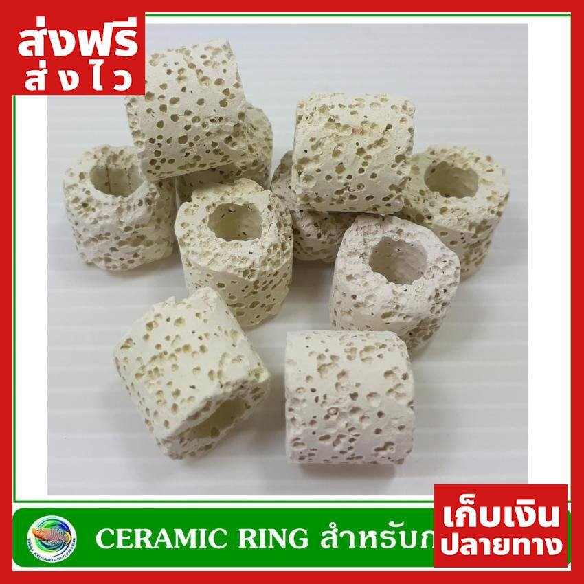 [ส่งฟรี] Ceramic Ring เซรามิค ริง สำหรับกรองน้ำบ่อปลา น้ำหนัก 500 กรัม ของแท้ ส่งไว ได้ของไว ฟรี!! ของแถม มีดนามบัตรพกพา