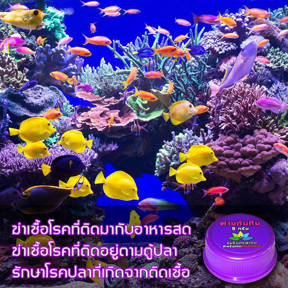 อ๊อกซิเจนปลา อ๊อกซิเจนฉุกเฉิน oxygen ผงออกซิเจนฉุกเฉิน ขนาด 100กรัม2กระปุก แถมฟรี ด่างทับทิม 10 กรัม มูลค่า 38 บาท
