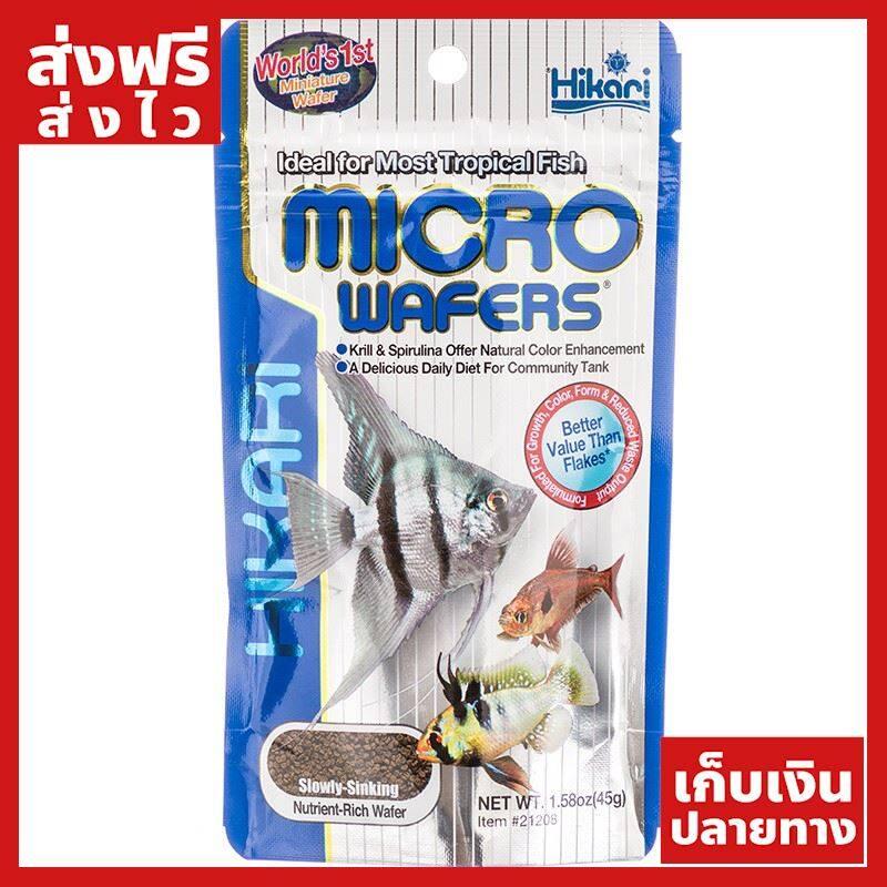[ส่งฟรี] Hikari Micro Wafers [ 20กรัม ]อาหารสำหรับปลาขนาดกลางและเล็ก ชนิดจมน้ำช้า ของแท้ ส่งไว ได้ของไว ฟรี!! ของแถม มีดนามบัตรพกพา