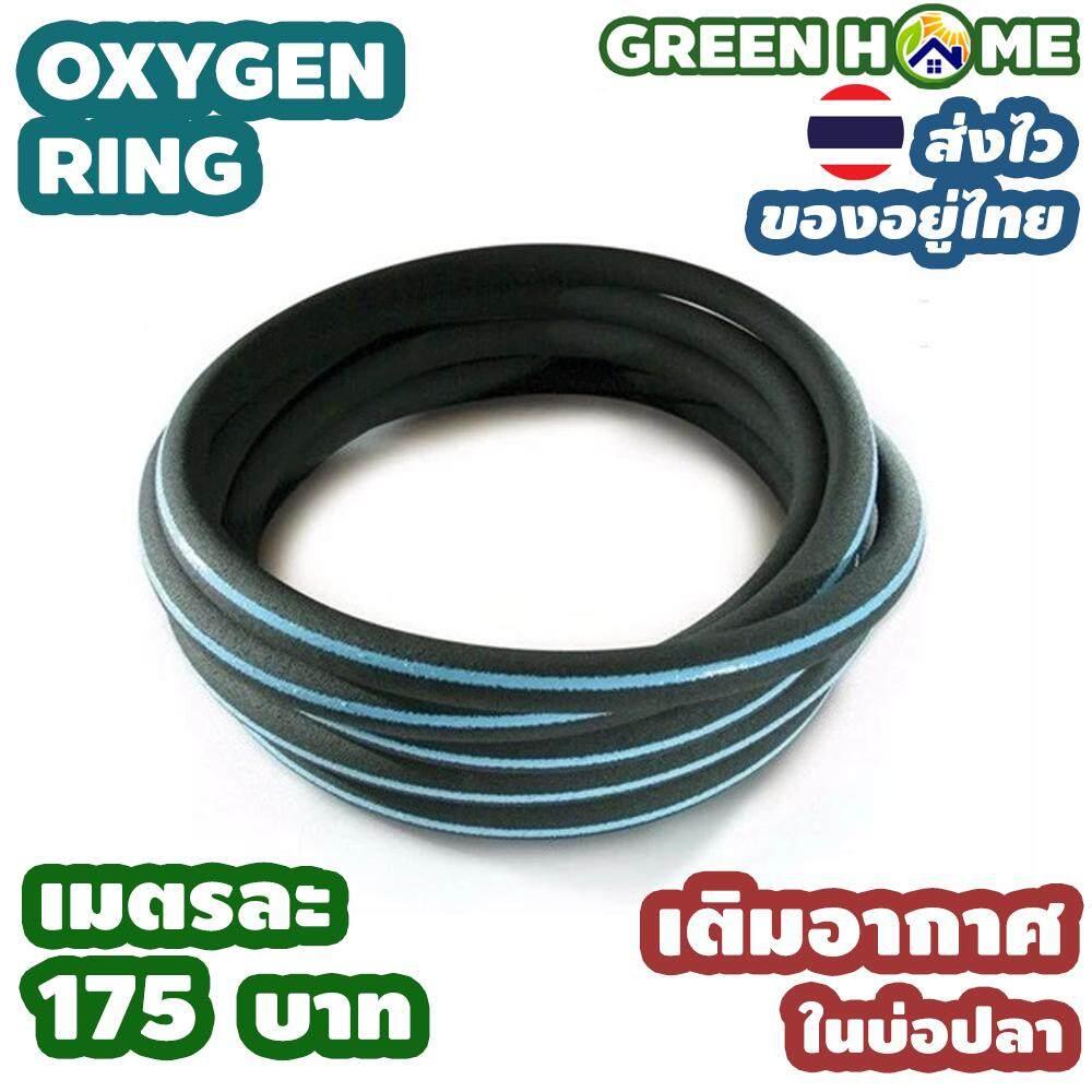 สายเติมอากาศ OXYGEN RING เติมอากาศ ในบ่อปลา ฟองละเอียด คุณภาพดี ส่งไว ส่งทุกวัน สินค้าอยู่ไทย