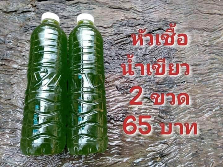 หัวเชื้อน้ำเขียว 2 ขวด ขนาด 600 มล.