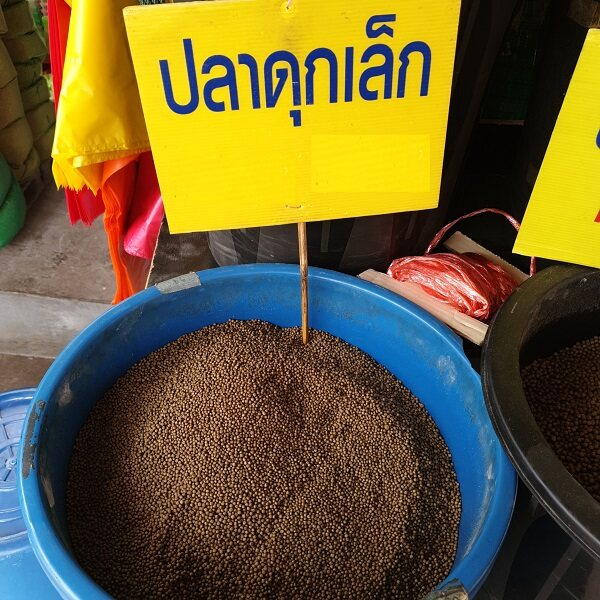 เม็ดอาหารปลาดุก 4.5 กก. สำหรับปลาดุกขนาดเล็กที่ออกแบบพร้อมสารอาหารทุกอย่างที่ปลาดุกต้องการสต็อกในประเทศไทย จัดส่งที่รวดเร็ว