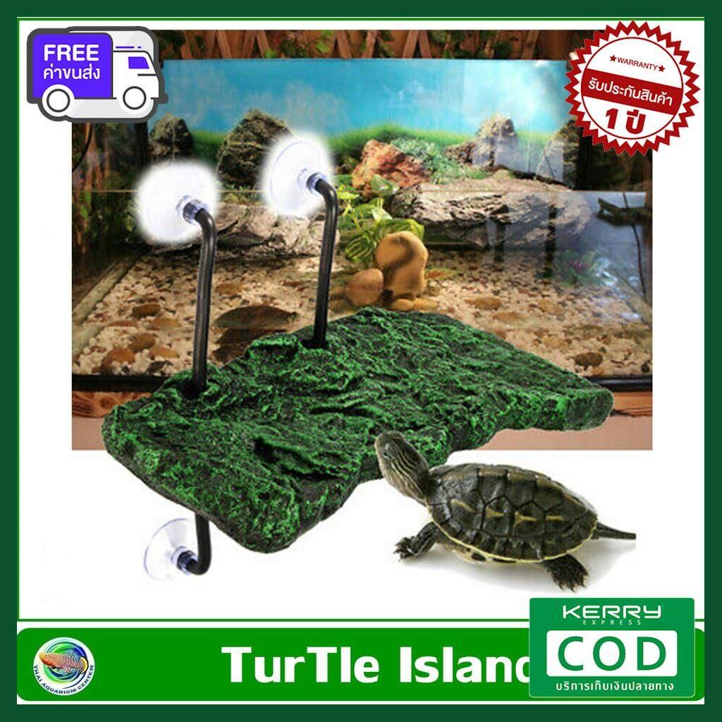 [ส่งฟรี ส่งไว] Turtle Dock ที่พัก สำหรับเต่าตะพาบ สัตว์ครึ่งบกครึ่ีงน้ำ โฟมลอยน้ำได้ ของแท้ คุณภาพดี ส่งไว ส่งทุกวัน ฟรี!! ของแถม