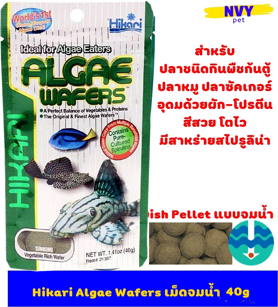 ฮิคาริ อาหารปลา ปลากินพืชก้นตู้ ปลาทะเลกินพืช ปลาแพะ ปลาหมู ปลาซัคเกอร์ เม็ดจมน้ำ สูตรเร่งสี เร่งโต 40 กรัม / Hikari Algae Wafers 40g (1.41 oz) Sinking Type