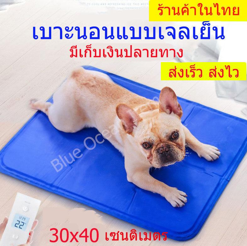 Pet Cool Mat/ เบาะรองนอนแบบเย็นสำหรับสุนัขและแมว/ ที่นอนสุนัขแบบเย็น/ แผ่นเจลเย็นรองนอนหมาแมว/ ที่นอนแผ่นเจลเย็นหมาแมว ขนาด 30x40 เซนติเมตร.