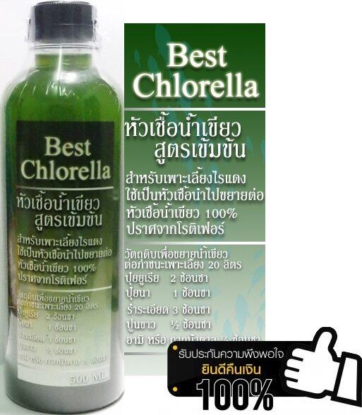 น้ำเขียวคลอเรลล่า chlorella 100 % (ขนาด 500 มิลลิลิตร) เข้มข้นเพาะเลี้ยงไรแดง/อาหารไรแดง